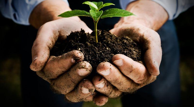 Peran FMIPA IPB dalam Pertanian