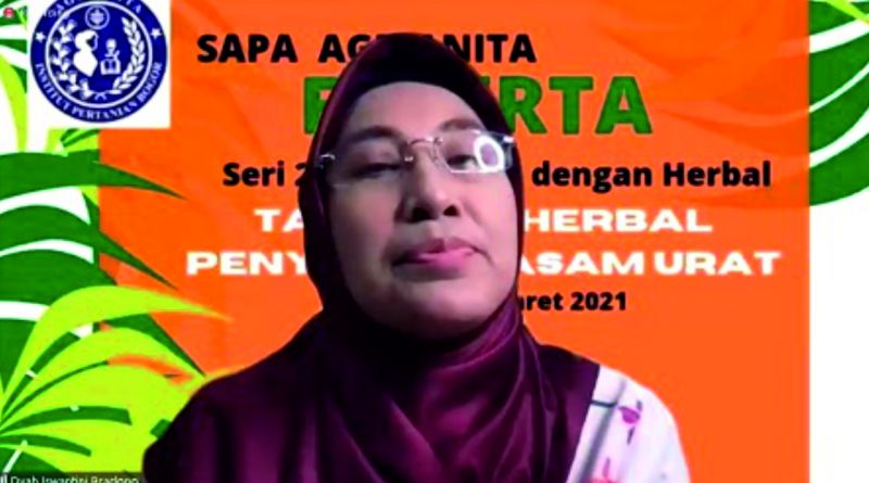 Prof Dyah Iswantini Bicara Keampuhan Sidaguri untuk Redakan Asam Urat di Sapa Agrianita